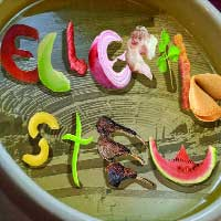 Eclectic Stew