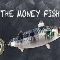 The Money Fi$h